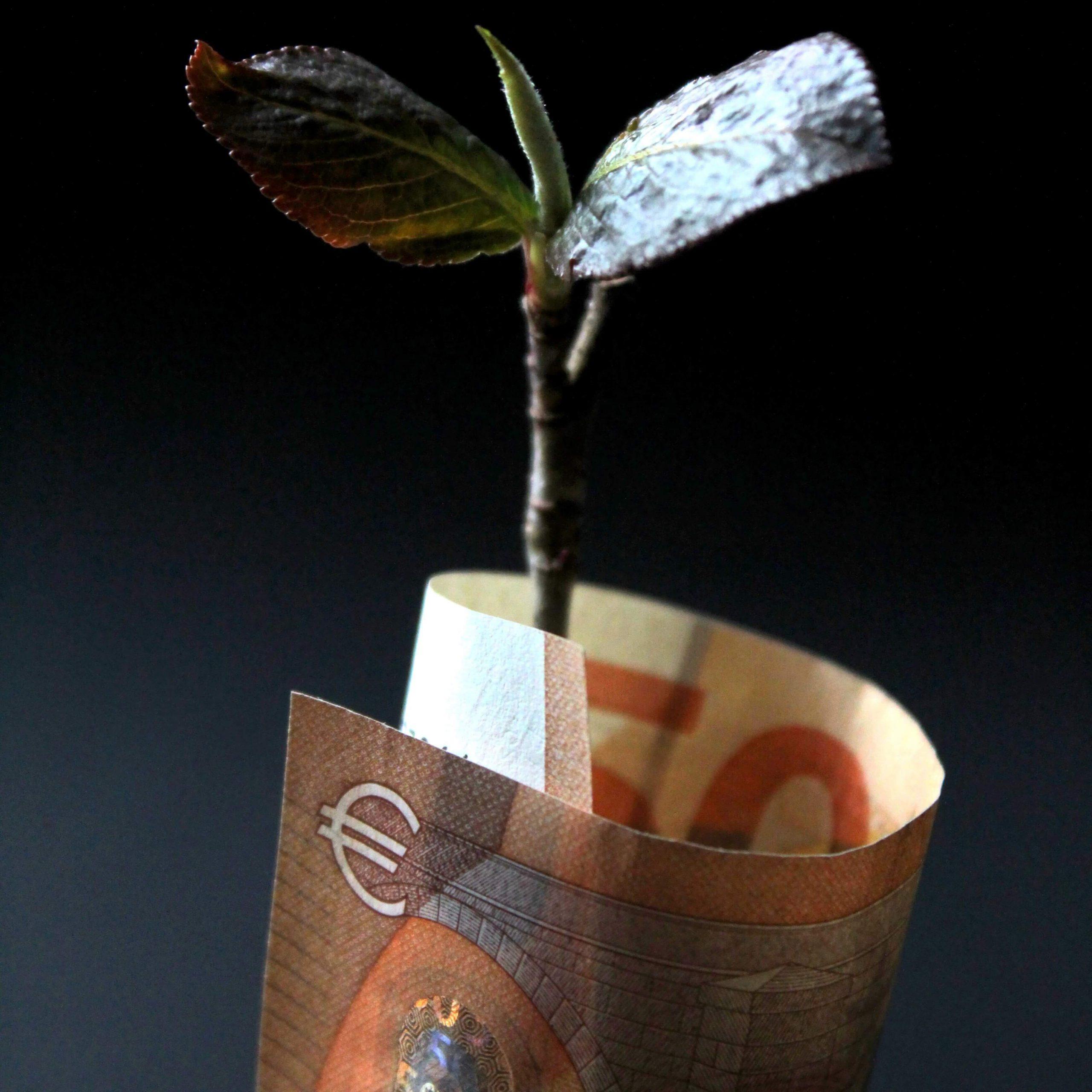 Ertragsteuerliche Erfassung der Zinsen auf Steuernachforderungen und Steuererstattungen